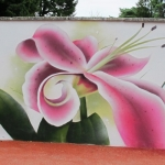 Stargazer-lily