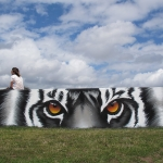 Tiger-Bay-Graffiti