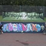 aberdare-skatepark