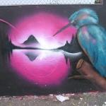 kingfishers-2
