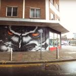 Empty-Walls-Cardiff