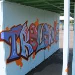 trelewisskatepark3