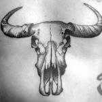 Robin-Skull-tattoo
