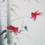 birds-detail